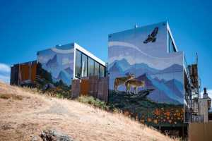 Discover some of the city's most distinctive murals along the way
